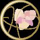 花の杜カイロプラクティック