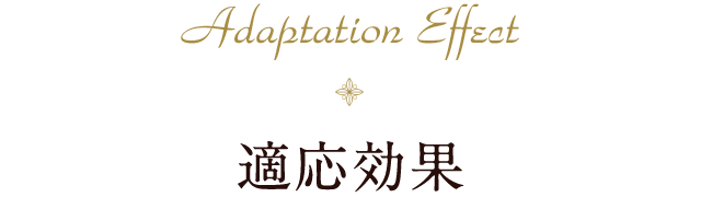 Adaptation Effect 適応効果